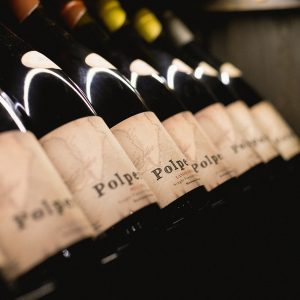 Polperro wines